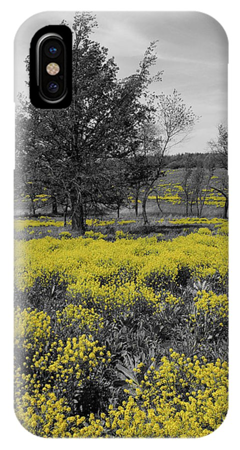 Prairie IPhone X Case featuring the photograph Yellow Prairie I by Dylan Punke