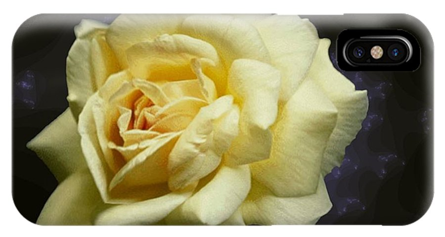 Yellow Rose IPhone X Case featuring the photograph Yellow Rose 2 by Tim Allen