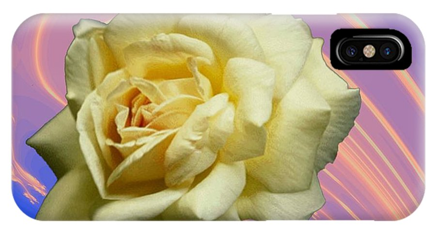 Rose IPhone X Case featuring the photograph Yellow Rose 3 by Tim Allen