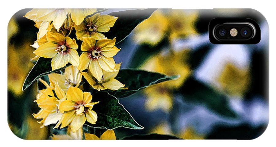 Yellow Blossoms IPhone X Case featuring the photograph You Are My Sunshine by Bonnie Bruno