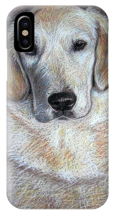 Dog IPhone X Case featuring the pastel Young Golden Retriever by Nicole Zeug