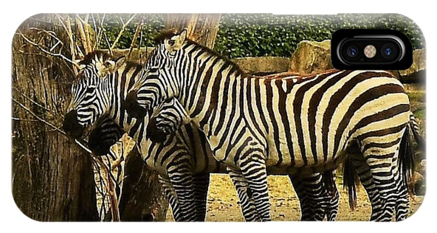 Wild IPhone X Case featuring the photograph Zebra by Johnny Griffin