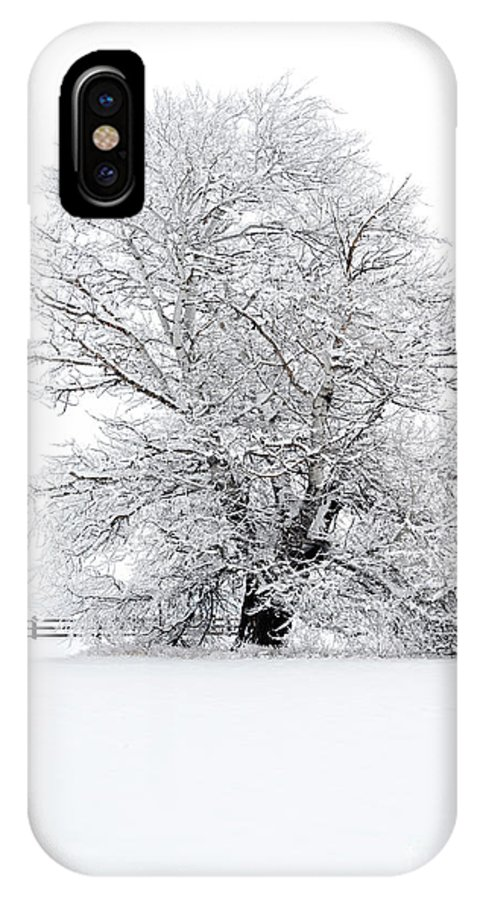 Snow IPhone X Case featuring the photograph Winter White by Mike Dawson