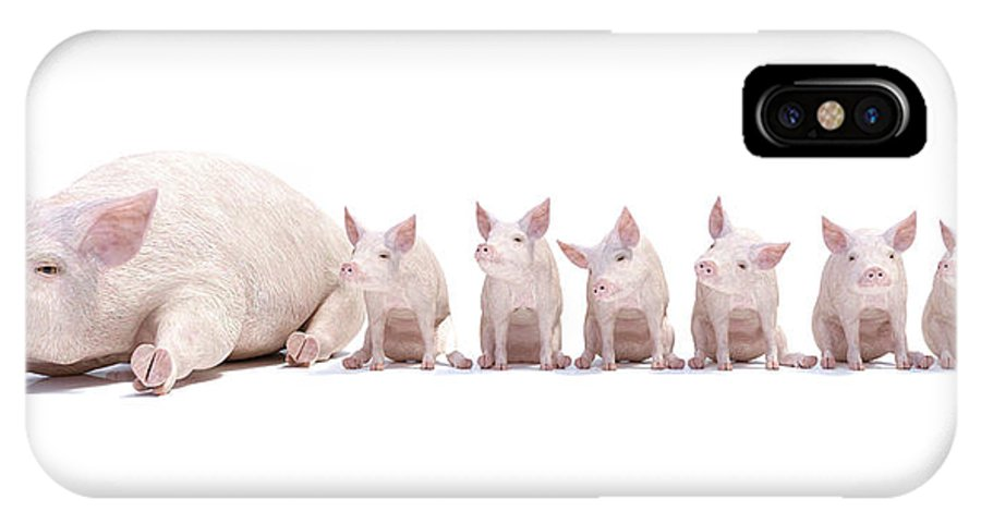 Pig IPhone X Case featuring the digital art Adorable Little Family by Betsy Knapp