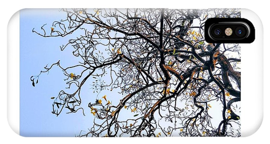 Autumn IPhone X Case featuring the photograph Autumn by Priya Hazra