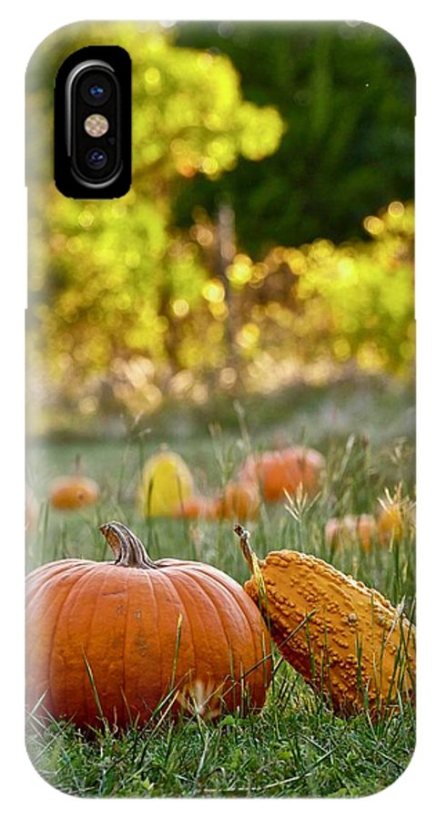 Autumn Colors IPhone X Case featuring the mixed media Bathed In Light by Marsha McDonald