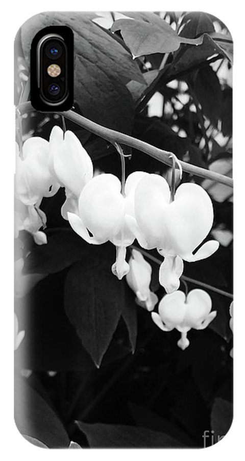Flower IPhone X Case featuring the photograph Black And White Bleeding Heart by Megan Cohen