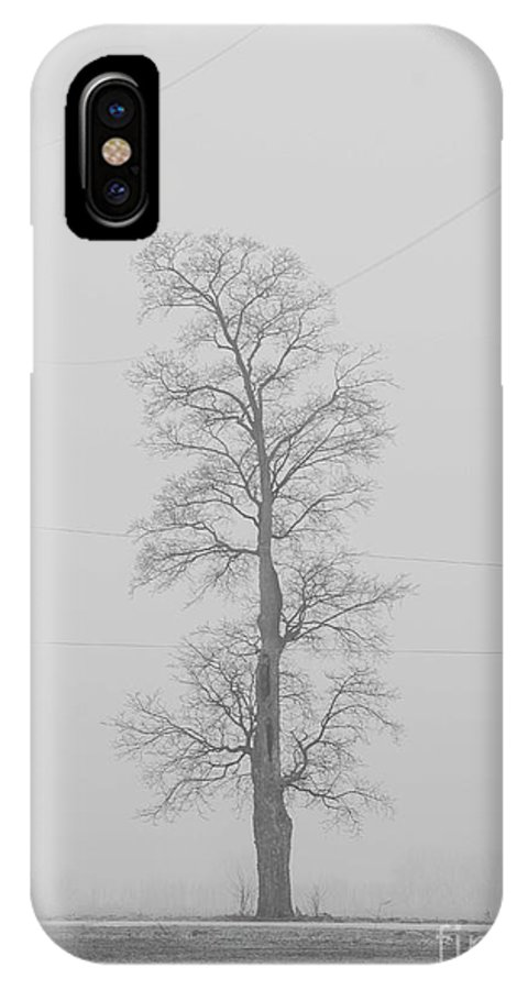 Tree IPhone X Case featuring the photograph Black and White Tree by David Bearden