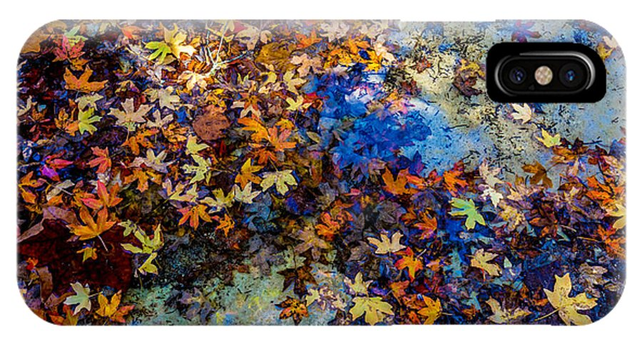 Country IPhone X Case featuring the photograph Bright Beautiful Fall Foliage Floating by Richard A Mcmillin