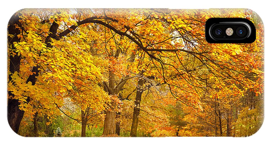 Country IPhone X Case featuring the photograph Collection Of Beautiful Colorful Autumn by Taiga