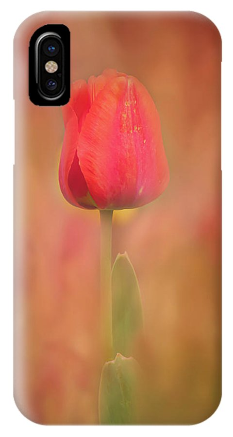 Flower IPhone X Case featuring the photograph Colors Of Spring #3 by Allin Sorenson