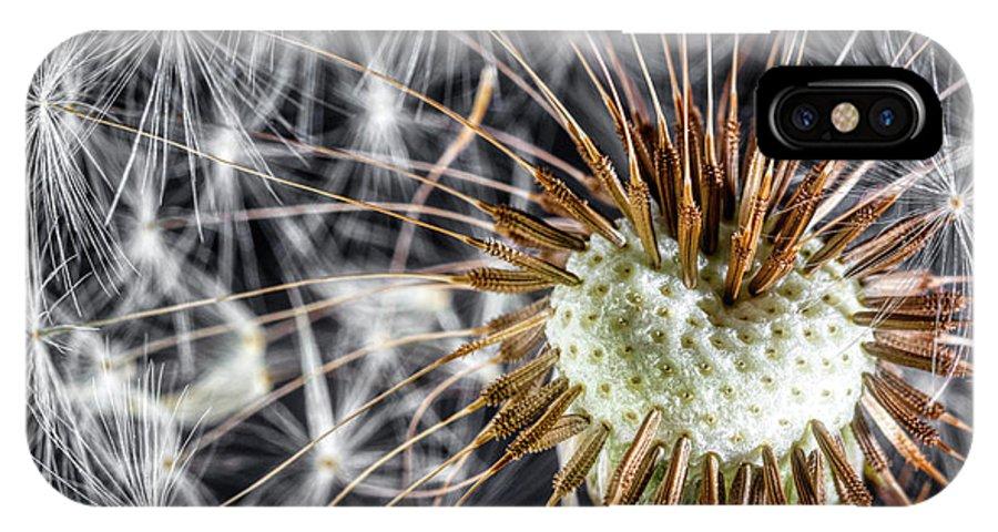 Dandelion IPhone X Case featuring the photograph Dandelion Seed Pod by Tom Mc Nemar