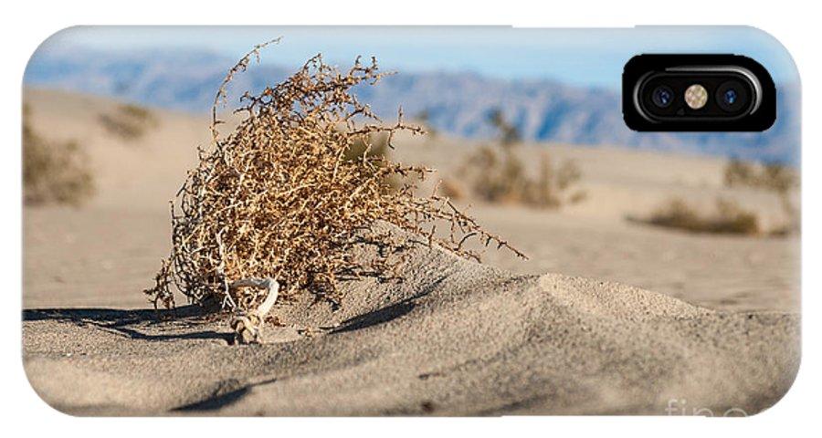 Southwest IPhone X Case featuring the photograph Dead Sagebrush Lies On Sand In Desert by Kenkistler