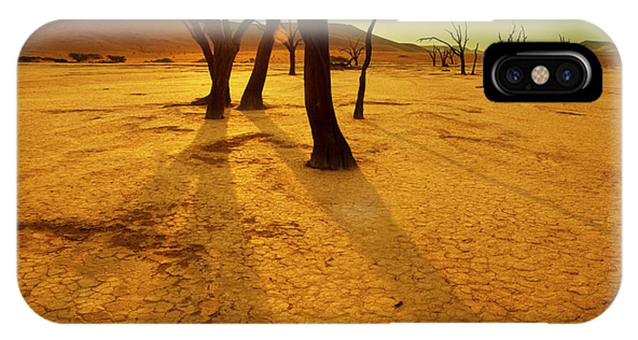 Heat IPhone X Case featuring the photograph Dry Trees In Namib Desert by Galyna Andrushko