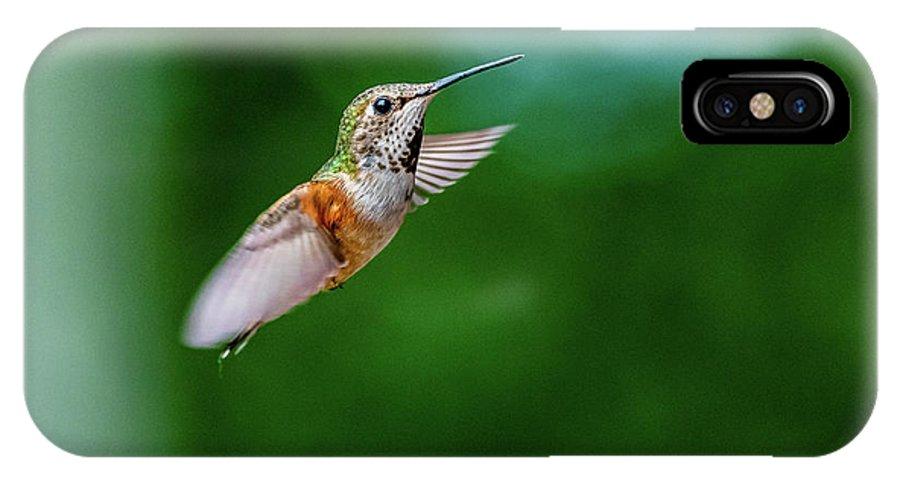 Humming Bird IPhone X Case featuring the photograph Humming Bird by Ian Stotesbury