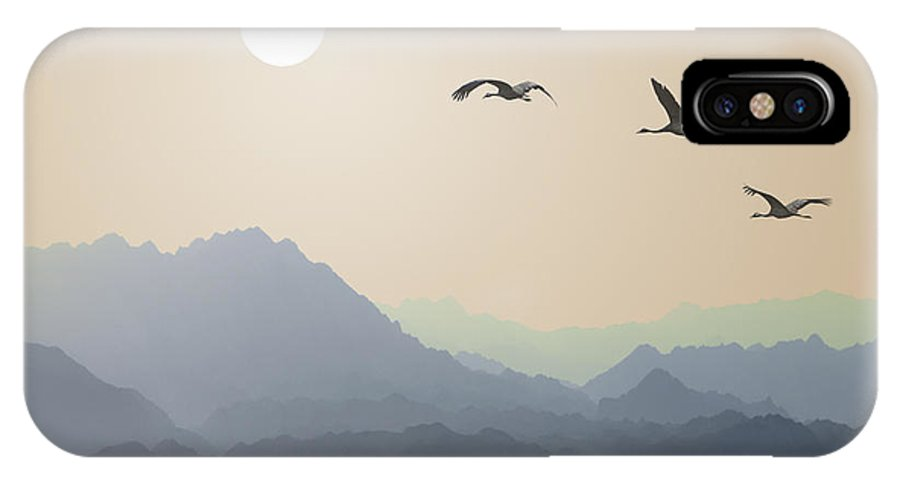 Symbol IPhone X Case featuring the photograph Migrating Cranes To The Sun Over The by Protasov An