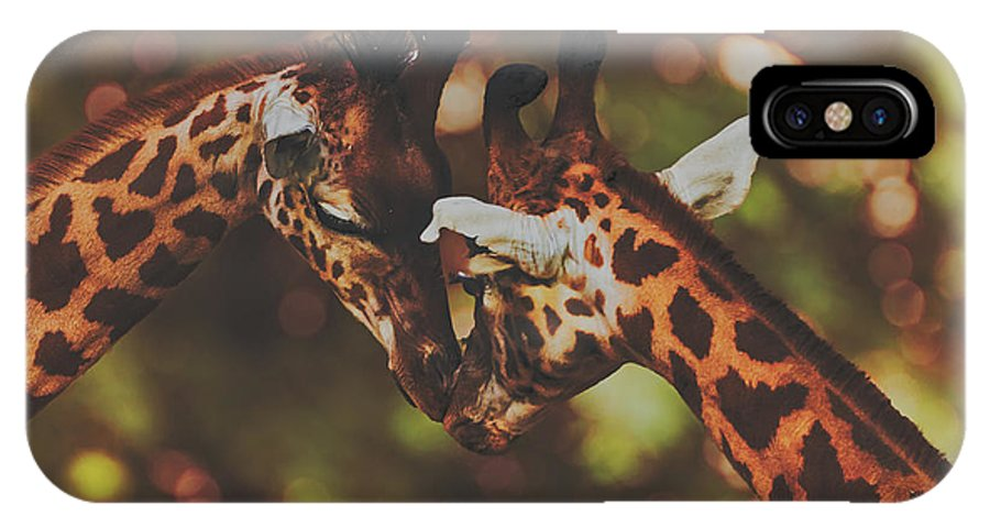 Giraffes IPhone X Case featuring the photograph Necking by Pixabay