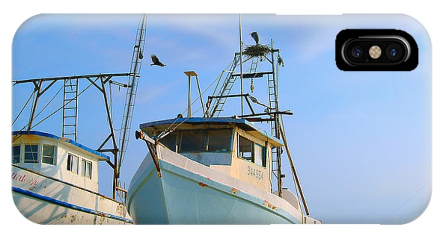 Pelicans Nesting In Shrimp Boat IPhone X Case featuring the photograph Pelicans Nesting On Shrimp Boat by Edward Swearingen