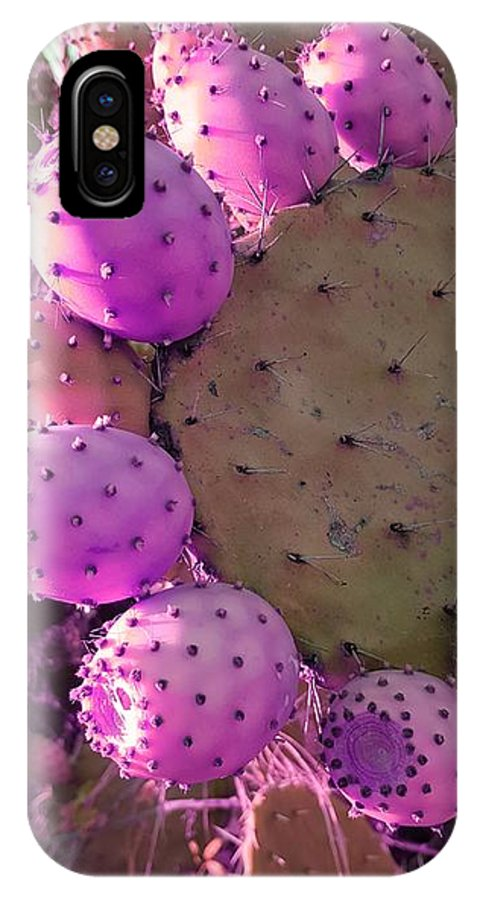 Prickly Pear Cactus IPhone X Case featuring the photograph Prickly Pear Cactus by Paola Baroni