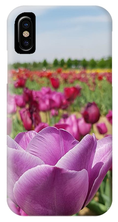 Tulip IPhone X Case featuring the photograph Purple Tulip by Paola Baroni