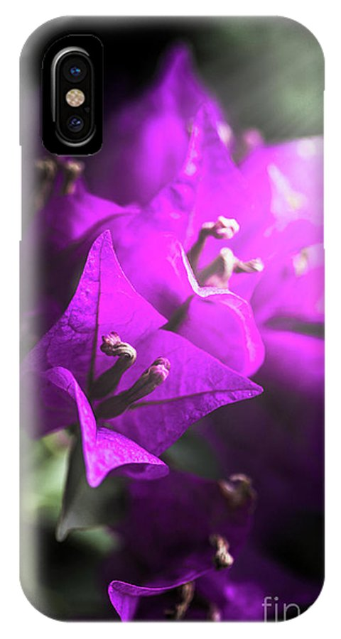 Flower IPhone X Case featuring the photograph Rays Of Bougainvillea by Jorgo Photography - Wall Art Gallery