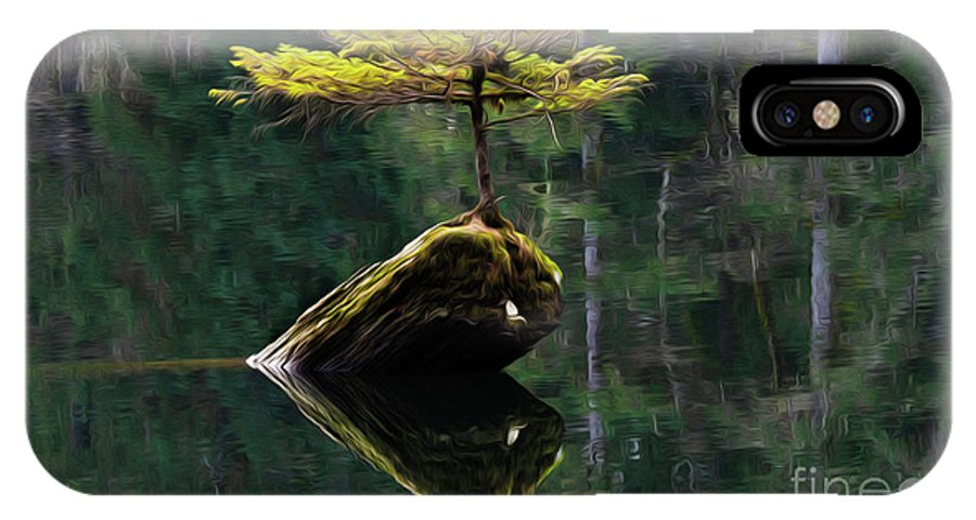 The Little Tree IPhone X Case featuring the photograph The Little Tree On Fairy Lake 5 by Bob Christopher