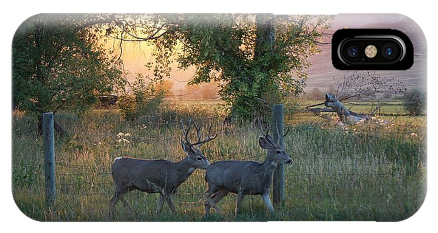 September IPhone X Case featuring the photograph Two Deer Sunset by Susan Brown
