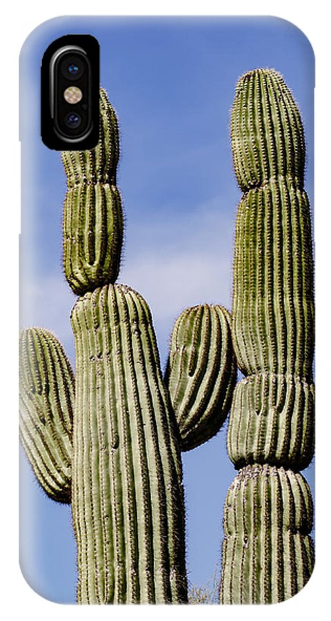 Adam Jones IPhone X Case featuring the photograph Upward View Of Saguaro Cactus And Blue by Adam Jones