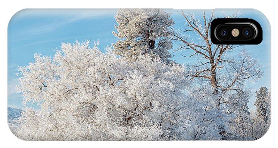 Winter Wonderland IPhone X Case featuring the photograph Winter Wonderland by Mike Dawson