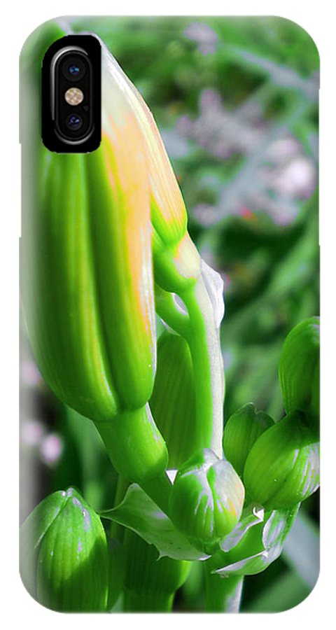 Lilly Bud Green Blossom Nature Digital Yellow Wating Flower Spring Photography Rlmdesignes Mcleod IPhone X Case featuring the photograph Anticipation by Rebekah McLeod