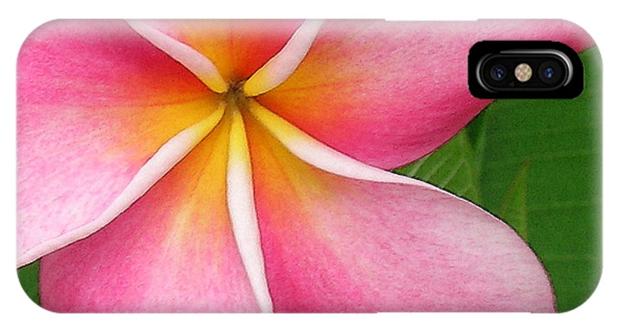 Hawaii Iphone Cases IPhone X Case featuring the photograph April Plumeria by James Temple