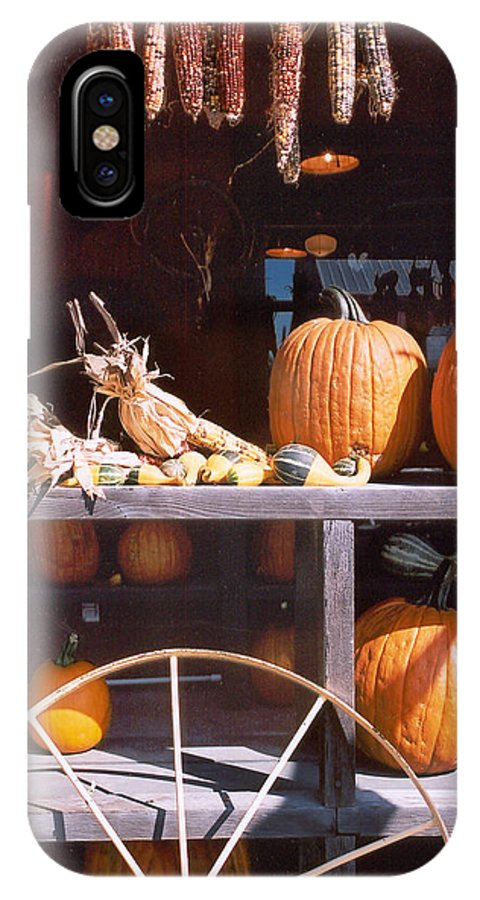Still Life IPhone X Case featuring the photograph Autumn Still Life by Steve Karol