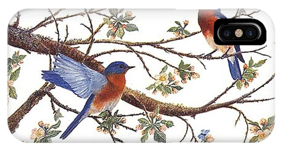 Bluebirds IPhone X Case featuring the painting Bluebirds And Apple Blossoms by Ben Kiger