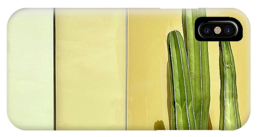 IPhone X Case featuring the photograph Cactus by Julie Gebhardt