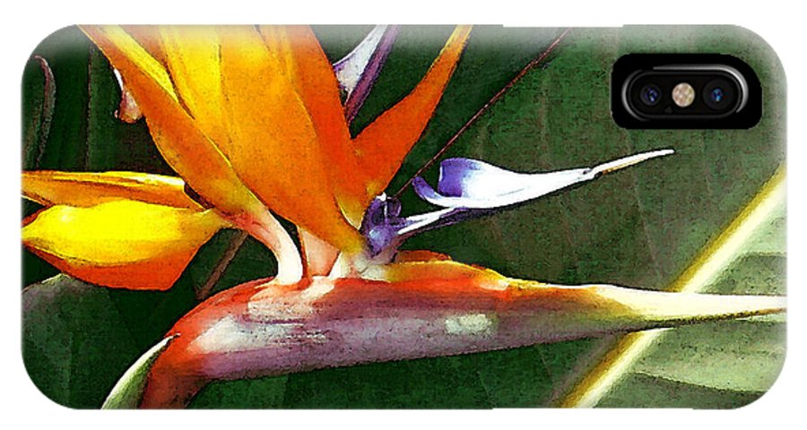 Bird Of Paradise IPhone X Case featuring the photograph Crane Flower by James Temple