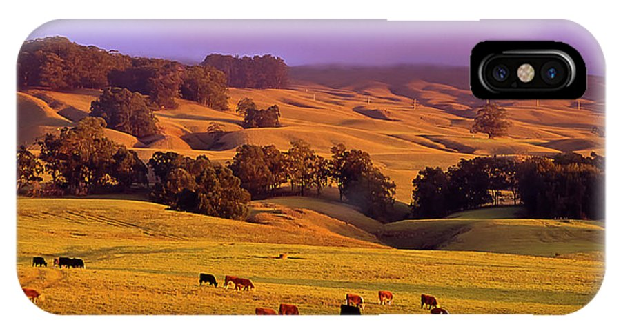 125 Year Anniversary Of The Haleakala Ranch IPhone X Case featuring the photograph Haleakala Ranch 125 Year Anniversary Cover Jacket by Jim Cazel