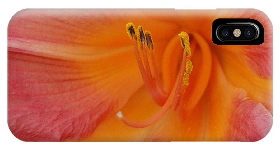 Day Lily IPhone X Case featuring the photograph Inner Sanctum by Suzanne Gaff