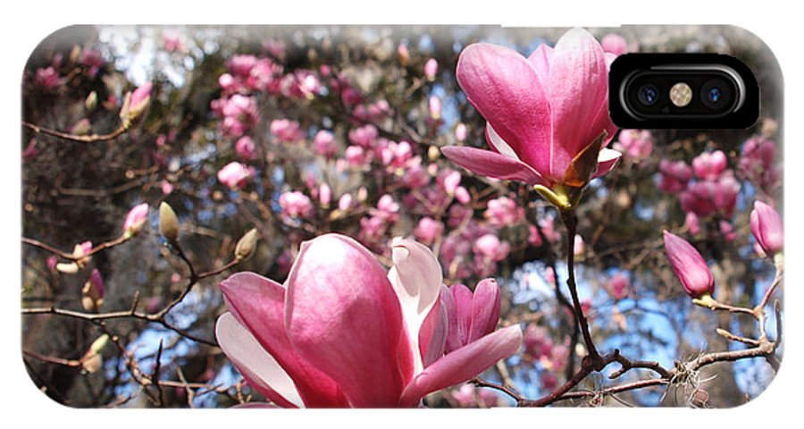 Magnolia IPhone X Case featuring the photograph Magnolia Heaven by Suzanne Gaff