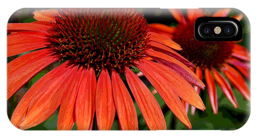 Orange IPhone X Case featuring the photograph Orange Cone Flowers by Suzanne Gaff