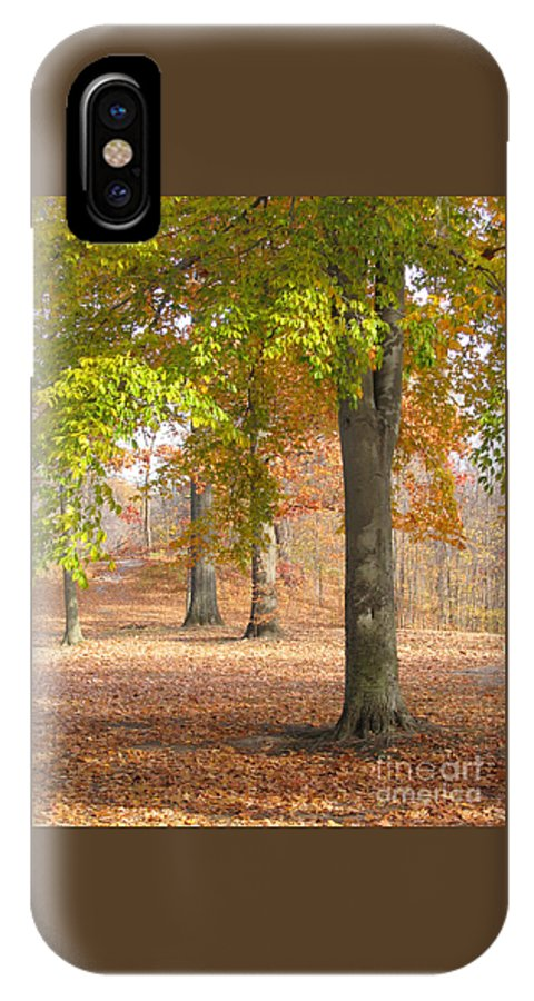 Autumn IPhone X Case featuring the photograph Painted Woodland by Ann Horn