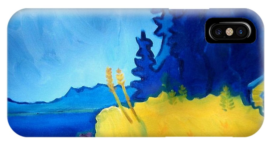 Seascape IPhone X Case featuring the painting Pemaquid Point by Debra Bretton Robinson