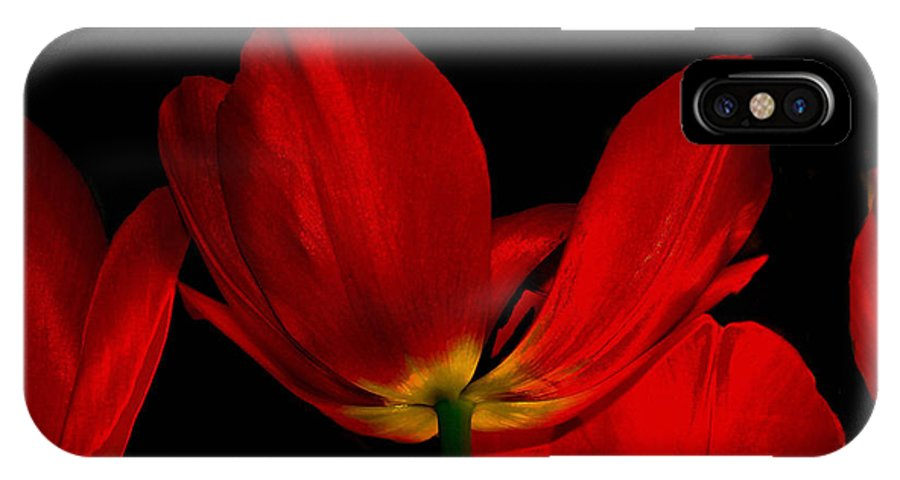 Flowers IPhone X Case featuring the photograph Red Silk by Linda Sannuti