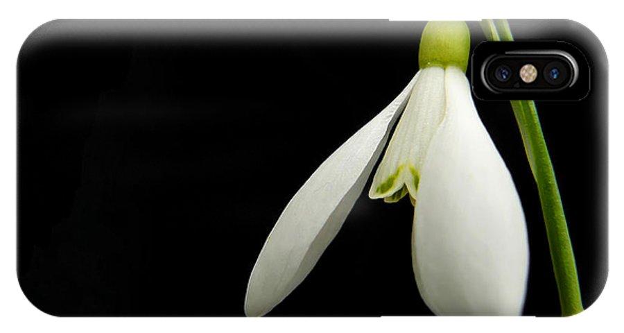 Snowdrop IPhone X Case featuring the photograph Snowdrop by Daniel Csoka