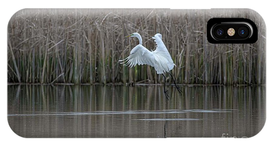 White Egret IPhone X Case featuring the photograph White Egret - 2 by David Bearden