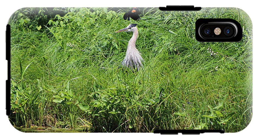 Annoyed - Heron And Red Winged Blackbird 8 Of 10 Phone Case