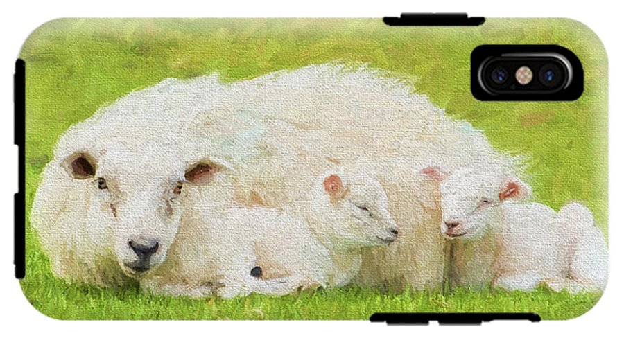 Mother And Baby Face Sheep Cuddled Up Illustration Like Oil Painting IPhone  X Tough Case