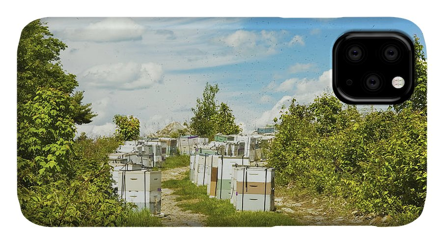 Beehive IPhone Case featuring the photograph Beehives In A Maine Blueberry Field by Keith Webber Jr