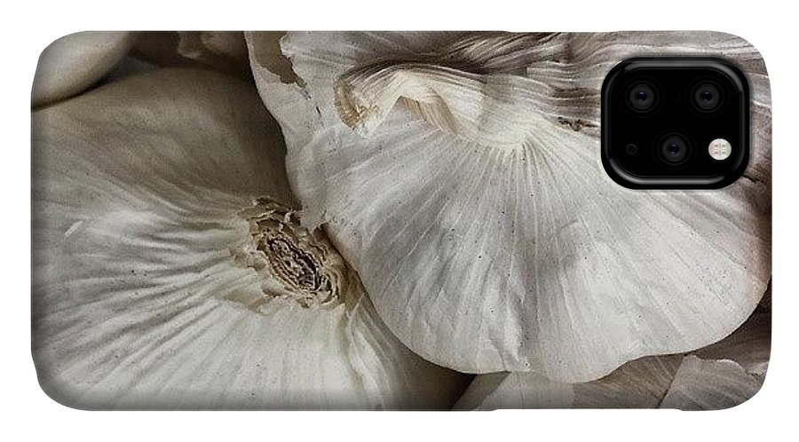 Foodgasm IPhone 11 Case featuring the photograph Garlic by Jason Michael Roust