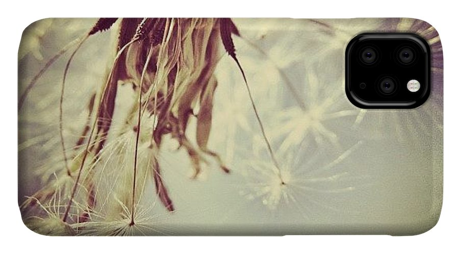 Wish IPhone Case featuring the photograph #mgmarts #dandelion #makeawish #wish by Marianna Mills