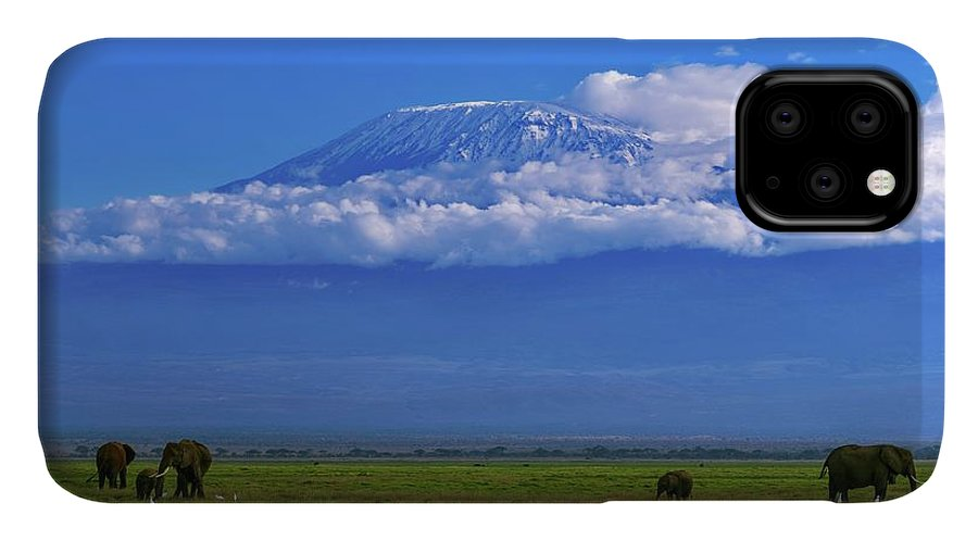 Animal IPhone Case featuring the photograph Mount Kilimanjaro by Babak Tafreshi